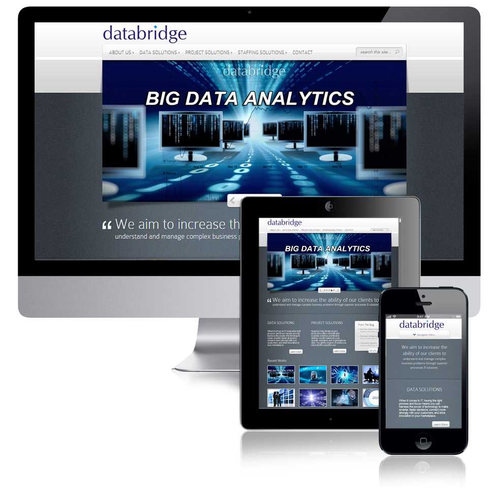 Data Bridge